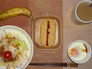 ハッシュドポテト,サラダ(キャベツ、レタス、大根、トマト),目玉焼き,バナナ,コーヒー