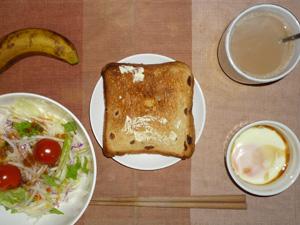 レーズントースト,サラダ(キャベツ、レタス、大根、トマト),目玉焼き,バナナ,コーヒー