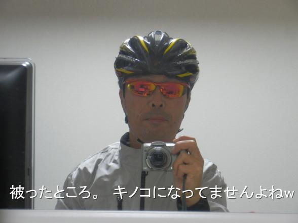 20151122 キノコ
