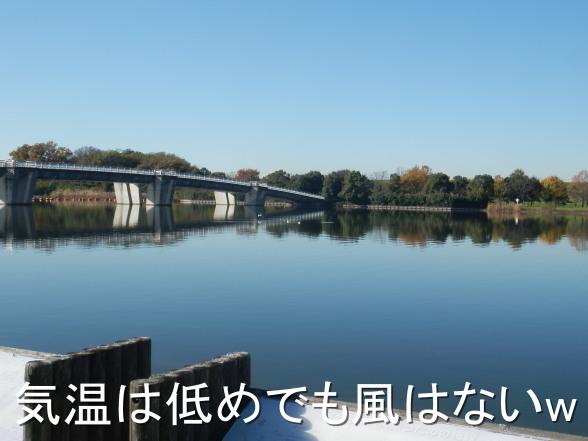 20151205 彩湖にて