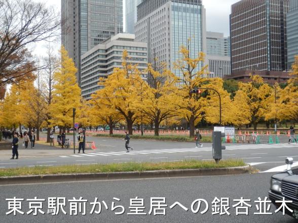 20151206 東京駅