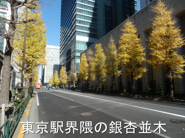 20151220 東京駅銀杏並木