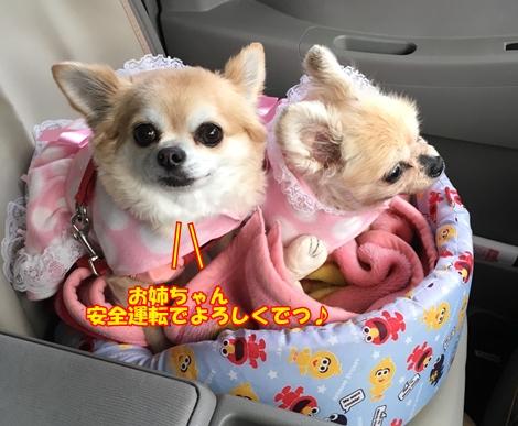 blogS__851972.jpg