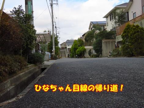 sx700IMG_9733.jpg