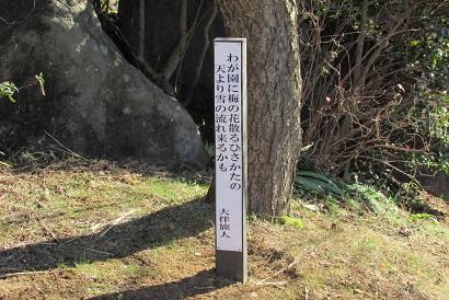 mikamo160207-122.jpg