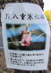 oomiyadaini160124-126.jpg