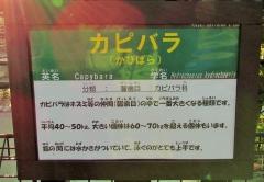 oosaki160110-116.jpg