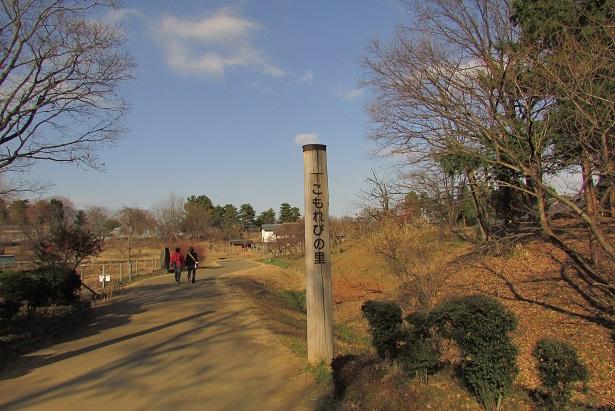 shouwa160111-114.jpg