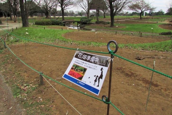 shouwa160111-129.jpg