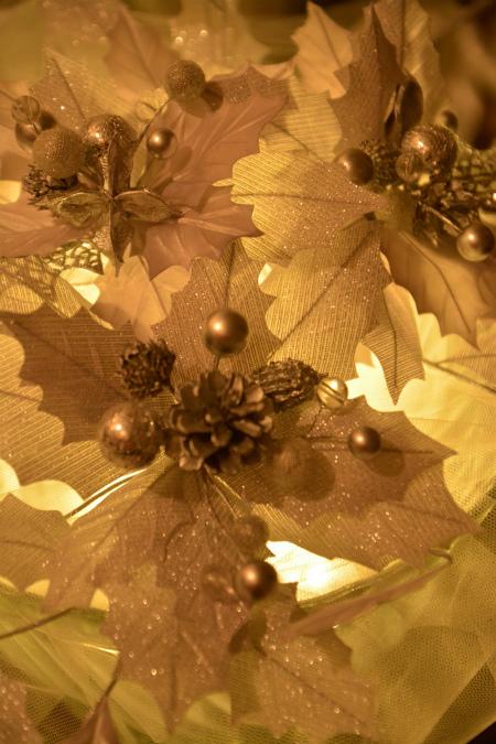 ブログ雪灯りの花2