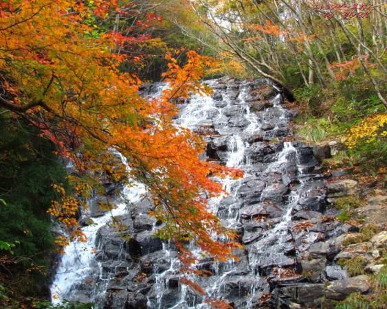 壁紙 2153秋の布滝1280×1024.jpg