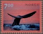 ノルウェー・ミンククジラ