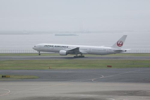 JA8941.jpg