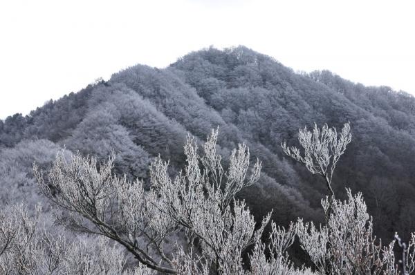 4石墨山15.12.28