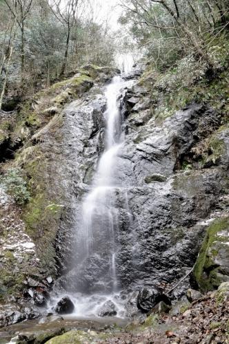 1白糸の滝16.01.17