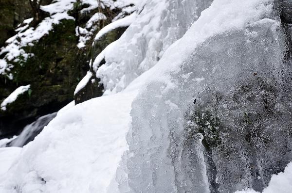 4白糸の滝16.01.27