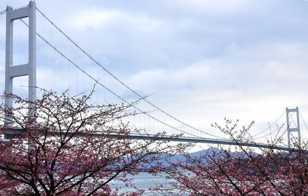 7糸山16.02.24