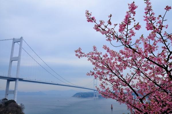 2糸山16.03.04