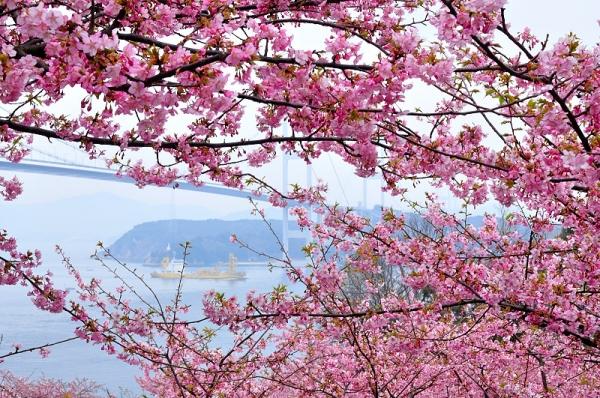 3糸山16.03.04