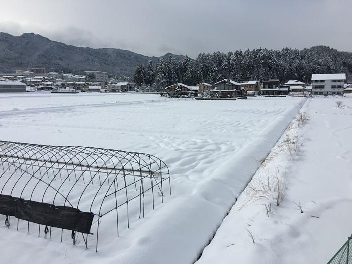2016 冬 到来 大寒