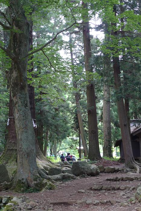 甲斐の神社  河口浅間神社  25
