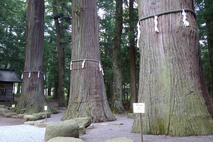 甲斐の神社  河口浅間神社  31