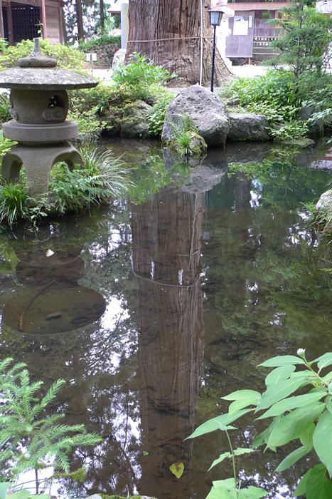 甲斐の神社  河口浅間神社  32