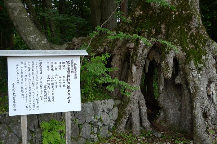 駿河の神社  富士浅間神社  2