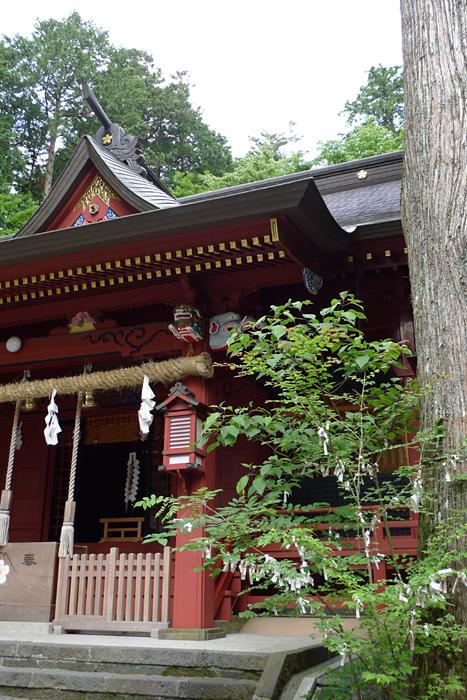 駿河の神社  富士浅間神社  22