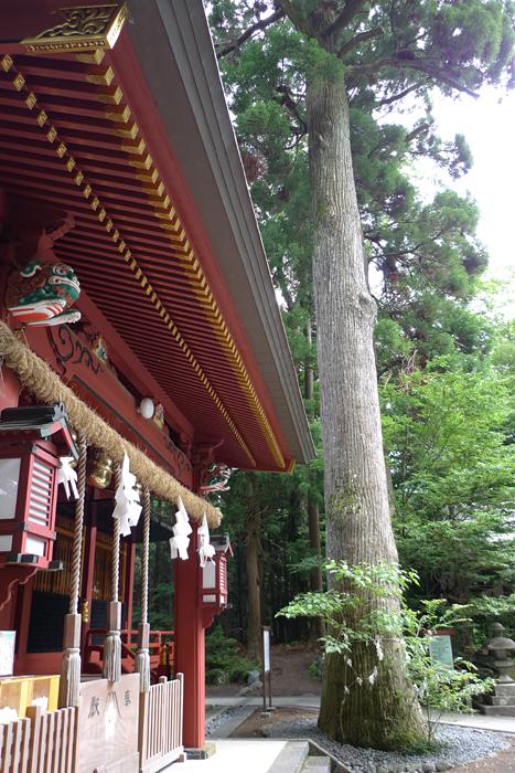 駿河の神社  富士浅間神社  25