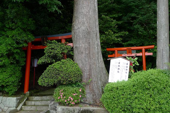相模の神社  箱根神社  1