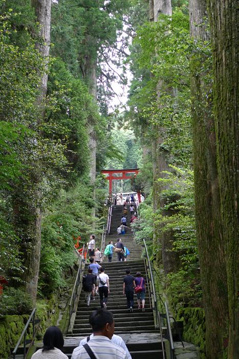 相模の神社  箱根神社  8