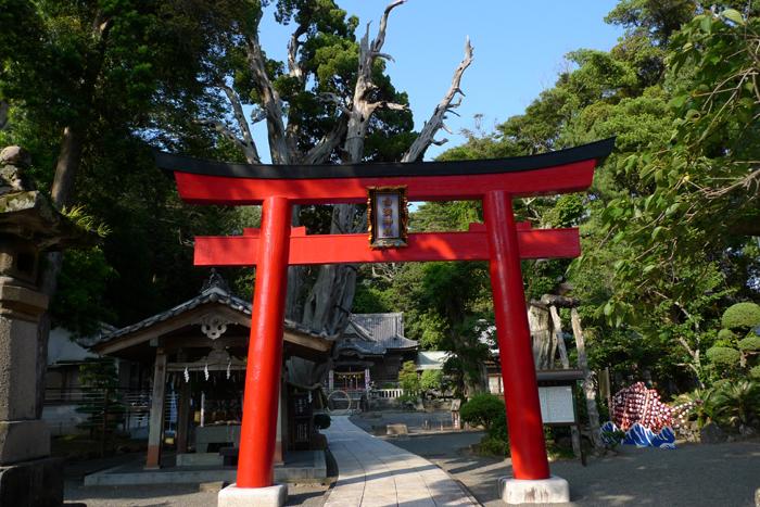 伊豆の神社  白濱神社  4