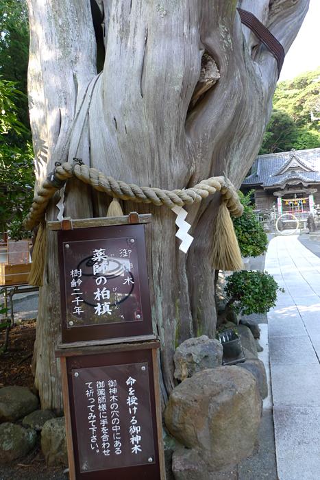 伊豆の神社  白濱神社  6