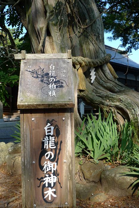 伊豆の神社  白濱神社  10