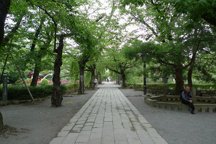 駿河の神社  三島大社  2