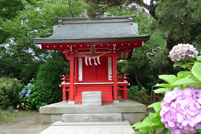 駿河の神社  三島大社  8