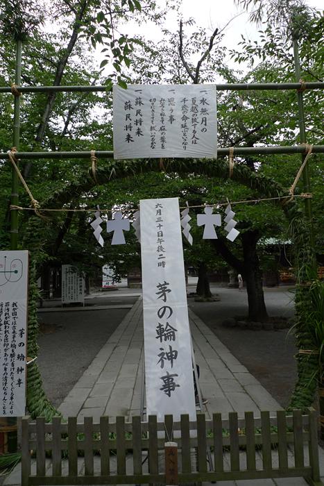 駿河の神社  三島大社  14