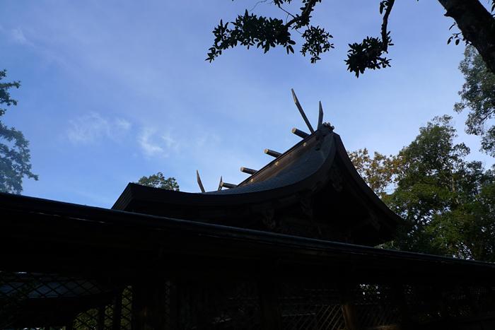 但馬の神社  出石神社  25