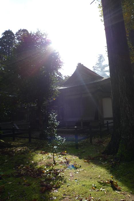 但馬の神社  出石神社  30