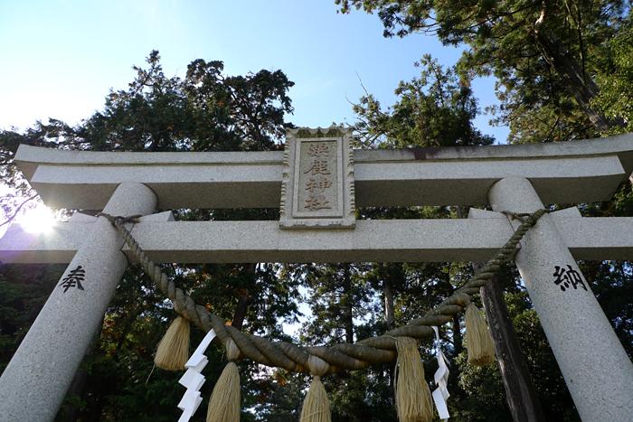 但馬の神社  粟鹿神社  2