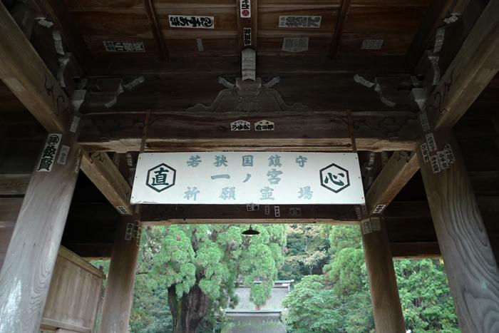 若狭の神社  若狭姫神社  9