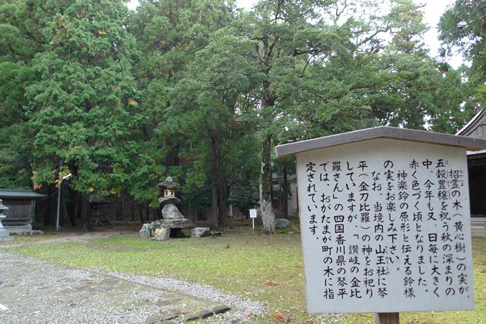 若狭の神社  若狭姫神社  10