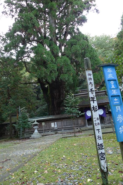 若狭の神社  若狭姫神社  11