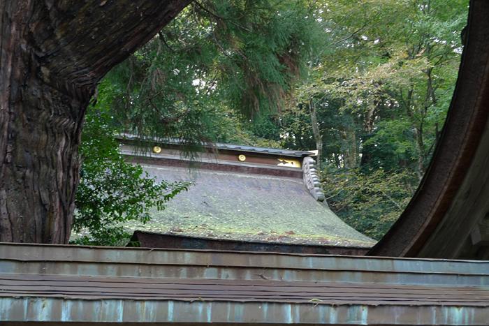 若狭の神社  若狭姫神社  17