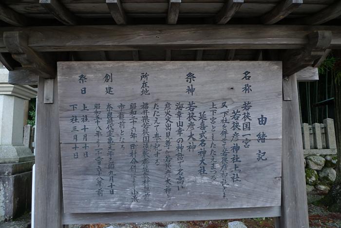 若狭の神社  若狭彦神社  2
