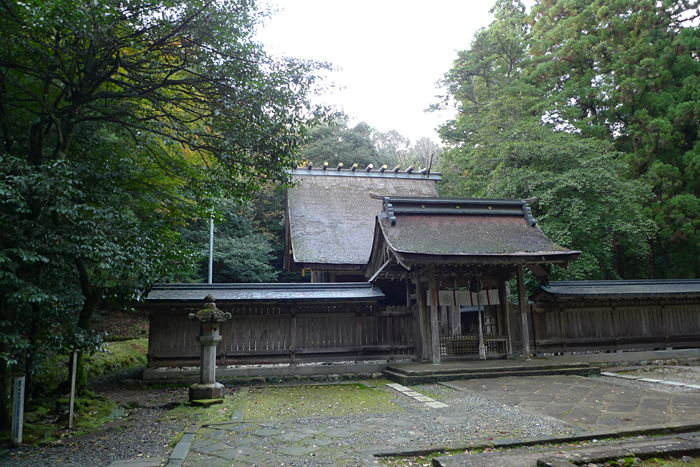 若狭の神社  若狭彦神社  14