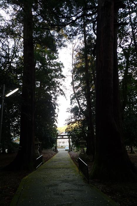 若狭の神社  若狭彦神社  9