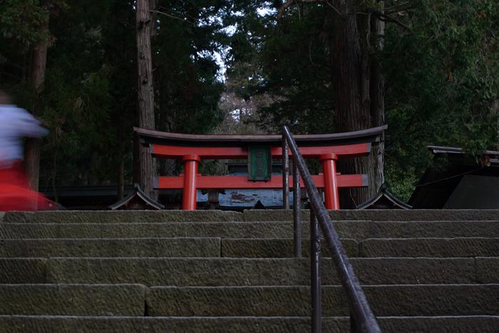 新春  2016  日枝神社 1