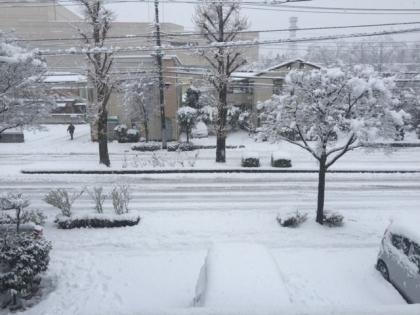 160118_雪_1